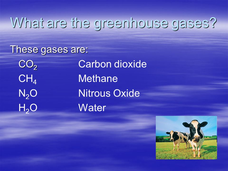 What are the greenhouse gases.