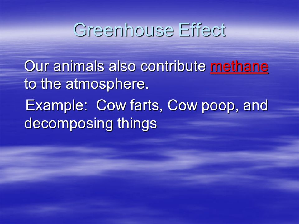 Greenhouse Effect Our animals also contribute methane to the atmosphere.