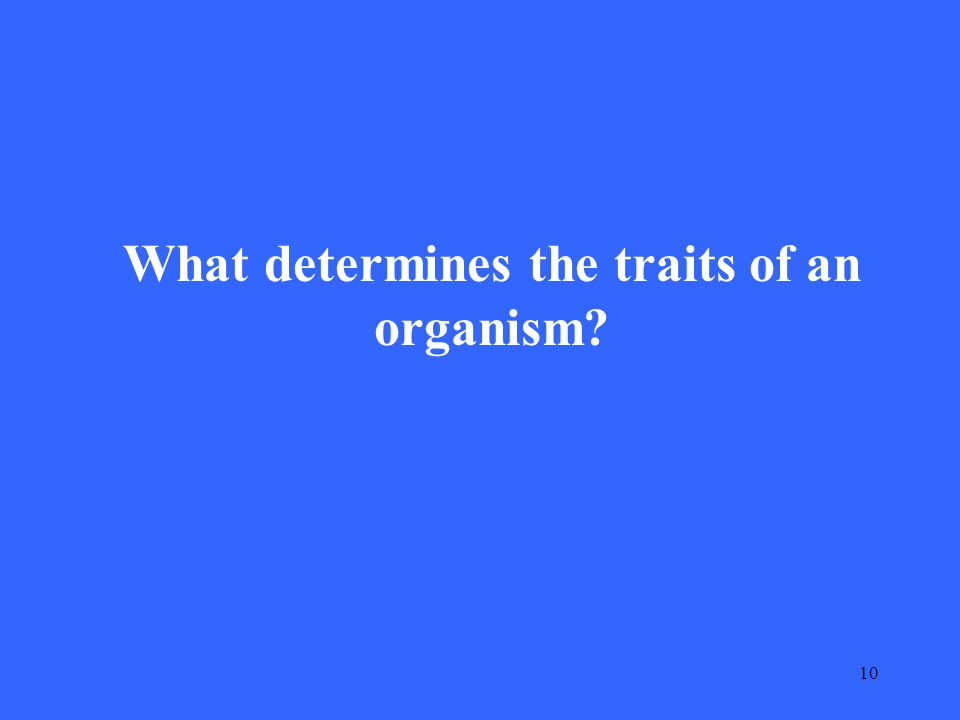 10 What determines the traits of an organism