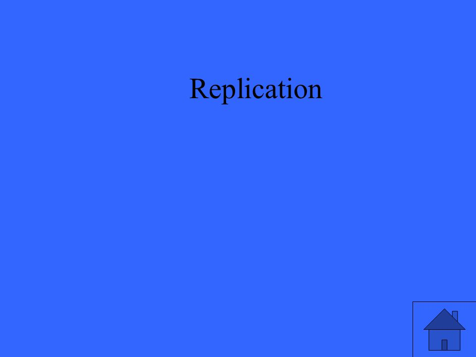 23 Replication