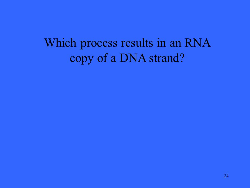 24 Which process results in an RNA copy of a DNA strand