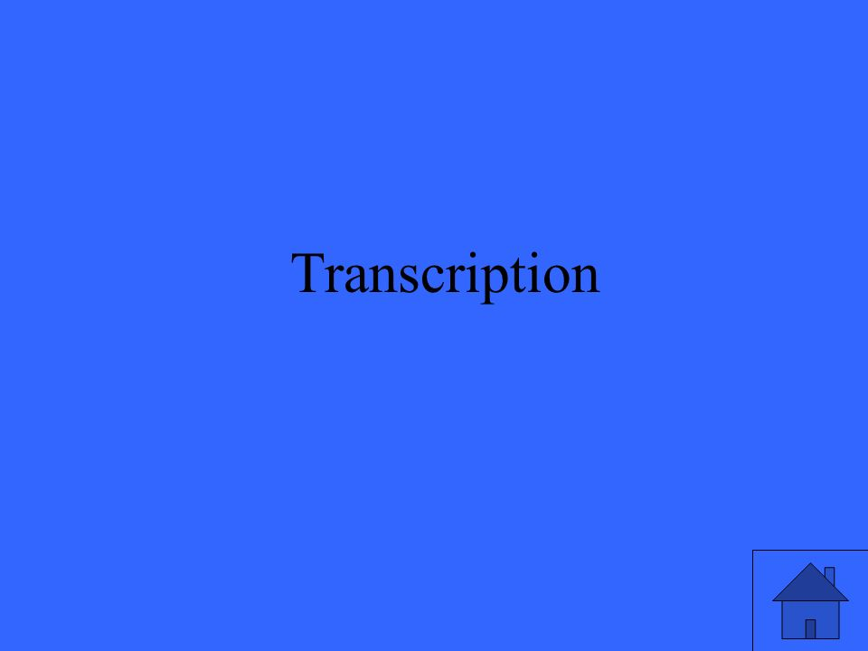 25 Transcription