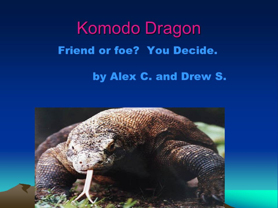 Komodo Dragon Friend or foe You Decide. by Alex C. and Drew S.