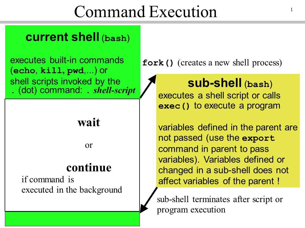 1 Command Execution current shell (bash) executes built-in commands (echo, kill, pwd,...) or shell scripts invoked by the.
