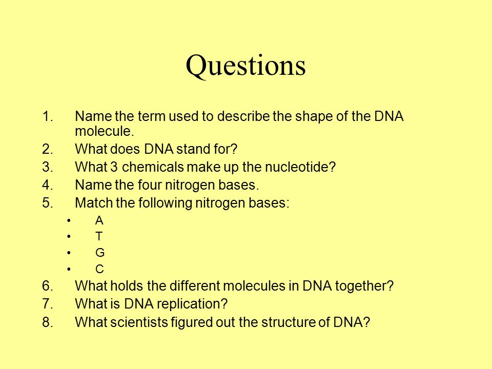 Questions 1.Name the term used to describe the shape of the DNA molecule.