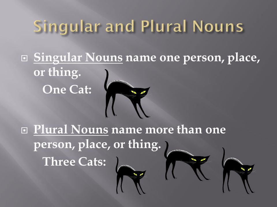  Singular Nouns name one person, place, or thing.