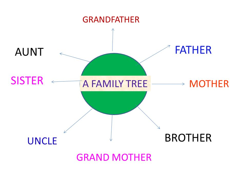 A FAMILY TREE FATHER MOTHER GRANDFATHER GRAND MOTHER SISTER BROTHER UNCLE AUNT