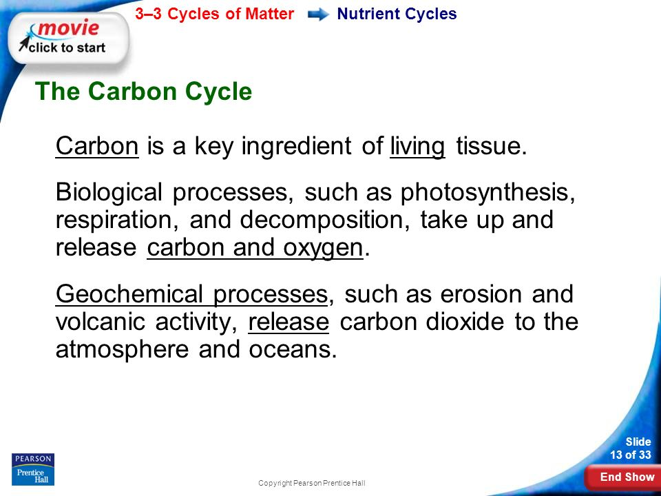 End Show 3–3 Cycles of Matter Slide 13 of 33 Copyright Pearson Prentice Hall Nutrient Cycles The Carbon Cycle Carbon is a key ingredient of living tissue.