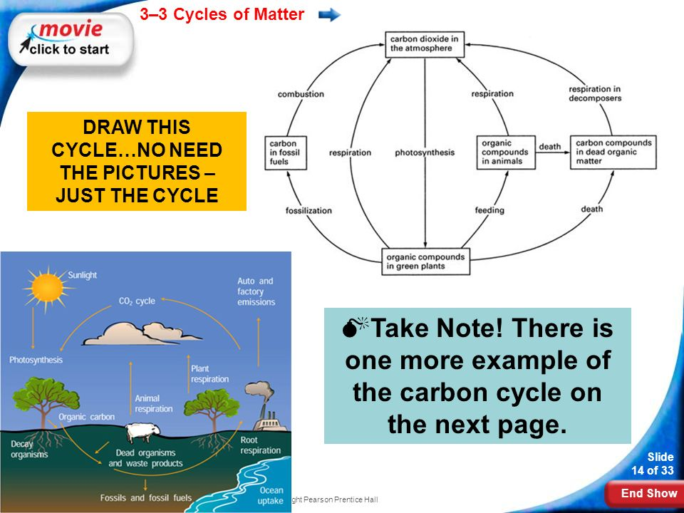 End Show 3–3 Cycles of Matter Slide 14 of 33 Copyright Pearson Prentice Hall DRAW THIS CYCLE…NO NEED THE PICTURES – JUST THE CYCLE  Take Note.