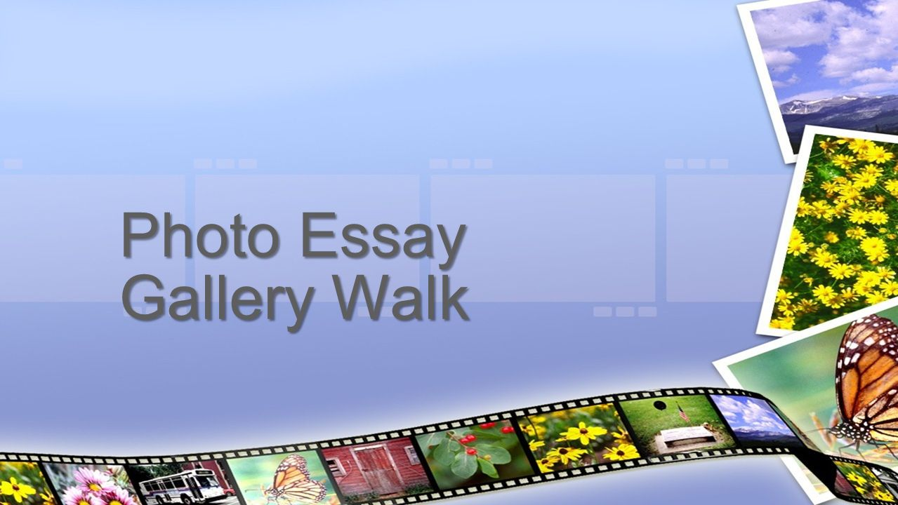 photo essay gallery walk guidelines for gallery walk things to 1 photo essay gallery walk