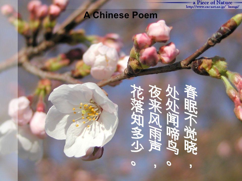 Translation: 相思 红豆生南国, 春来发几枝 . 愿君多采撷, 此物最相思.
