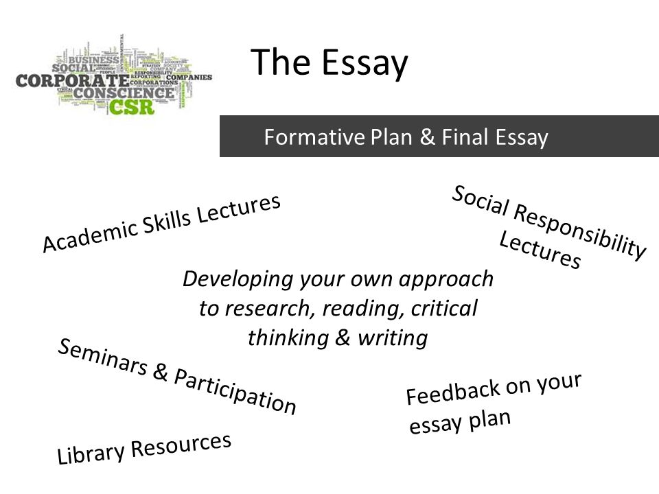 essay on social responsibilities Social responsibility of a company essay