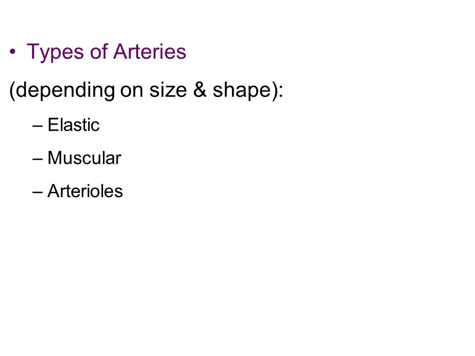 Types of Arteries (depending on size & shape): –Elastic –Muscular –Arterioles