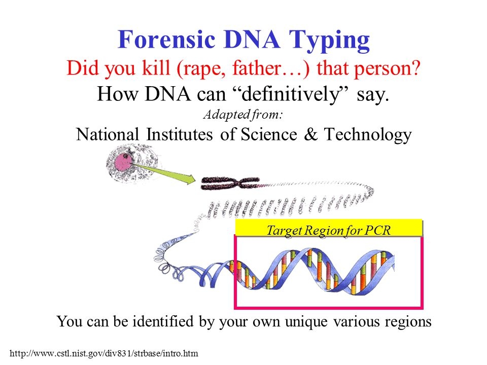 dna technology research paper Dna evidence at crime scenes is invaluable and is discussed in a dna evidence research paper from paper masters paper masters specializes in projects on criminology and criminal justice topics.