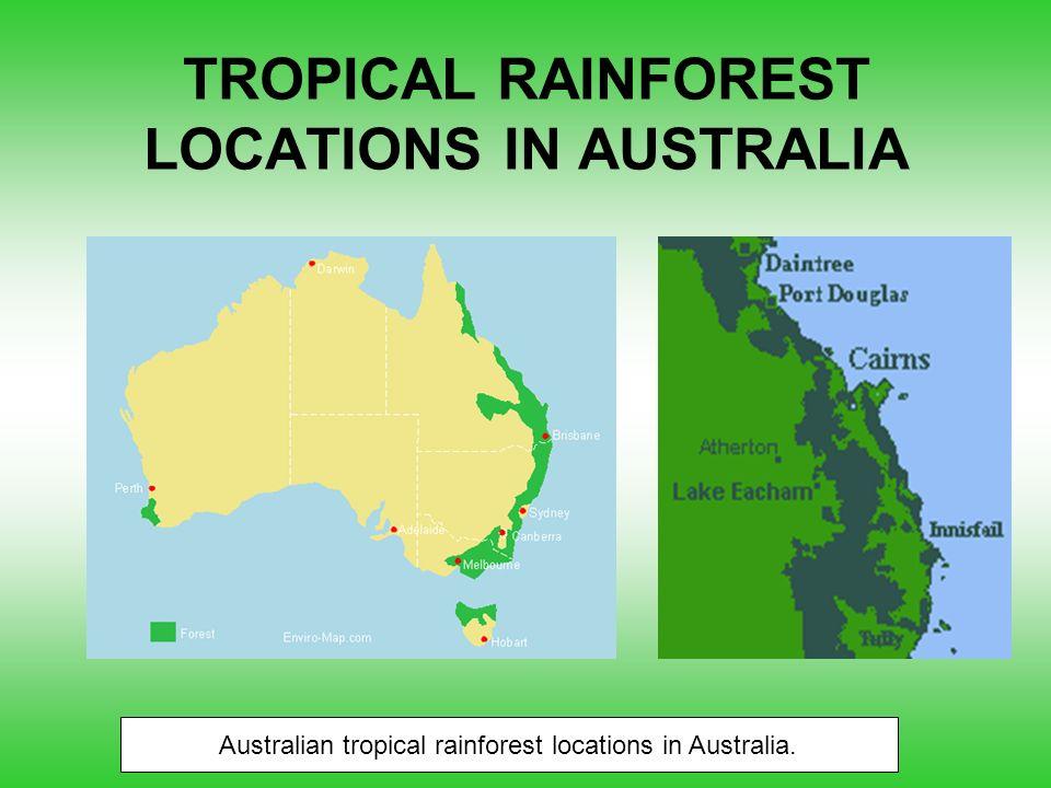 5 TROPICAL RAINFOREST LOCATIONS IN AUSTRALIA Australian tropical rainforest  locations in Australia.