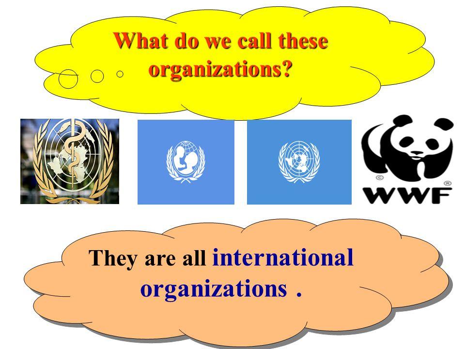 1 Who A World Health Organization 2 Un B United Nations 3