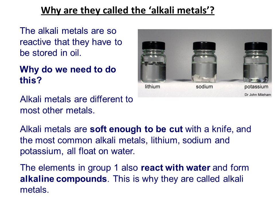 why are they called the alkali metals - Periodic Table Alkali Metals Reactivity