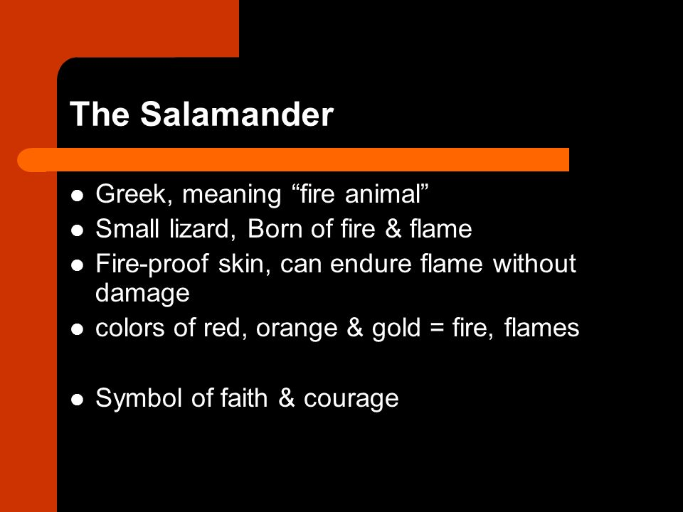 animal symbolism in fahrenheit 451 Fahrenheit 451 is based on a short story called the fireman written by bradbury in 1951 and later expanded into a animal imagery as a symbol of the fireman.