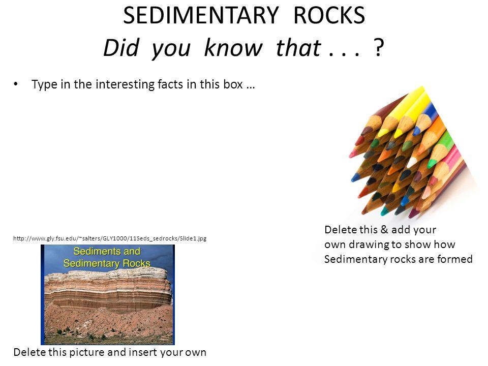 sci 245 sedimentary rock worksheet