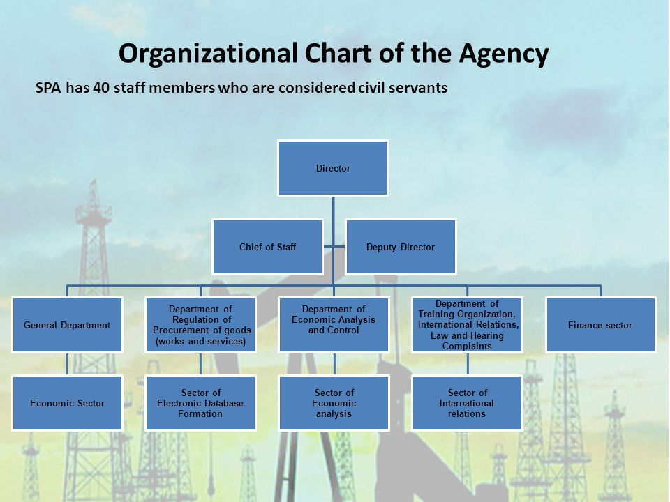 Director General Department Economic Sector Department of Regulation of Procurement of goods (works and services) Sector of Electronic Database Formation Department of Economic Analysis and Control Sector of Economic analysis Department of Training Organization, International Relations, Law and Hearing Complaints Sector of International relations Finance sector Chief of StaffDeputy Director Organizational Chart of the Agency SPA has 40 staff members who are considered civil servants
