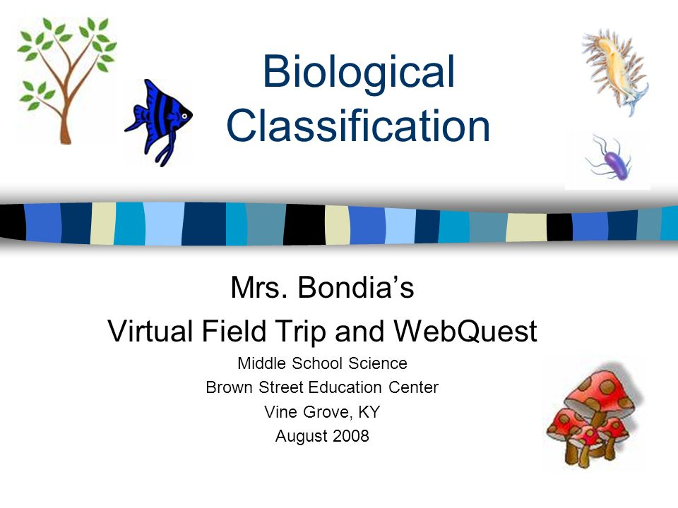 Biological Classification Mrs.