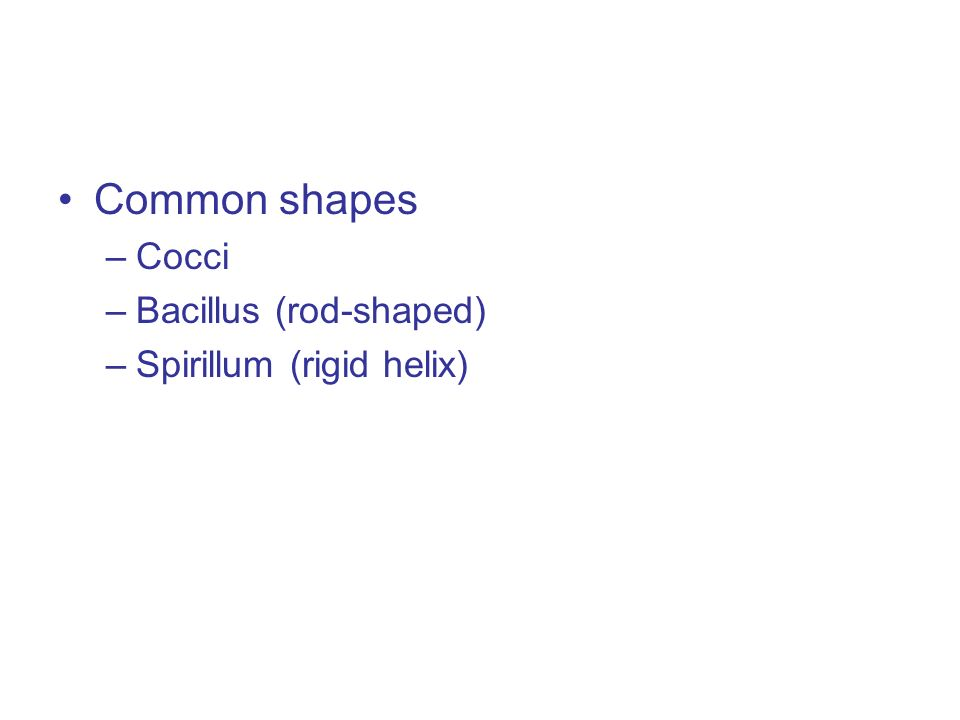 Common shapes –Cocci –Bacillus (rod-shaped) –Spirillum (rigid helix)
