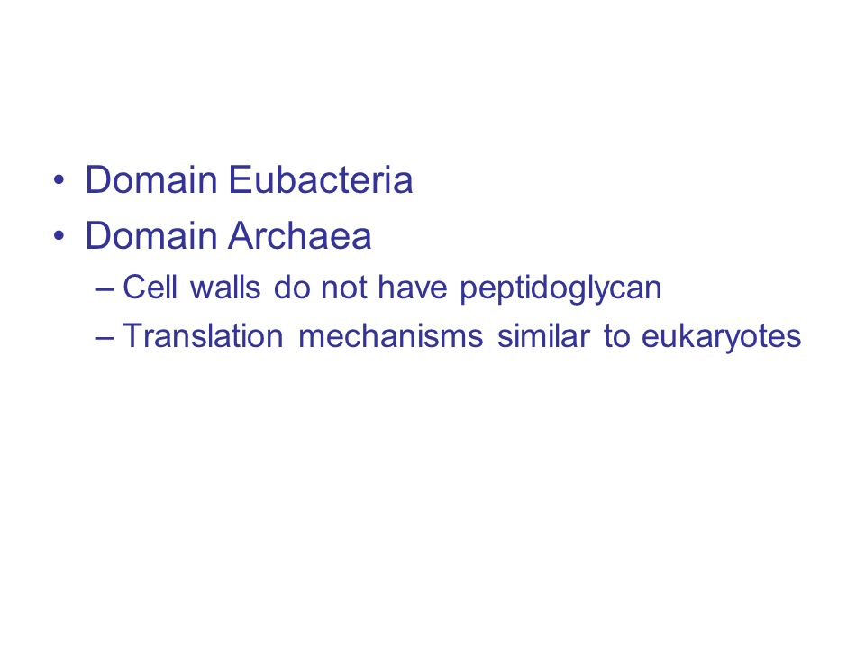 Domain Eubacteria Domain Archaea –Cell walls do not have peptidoglycan –Translation mechanisms similar to eukaryotes
