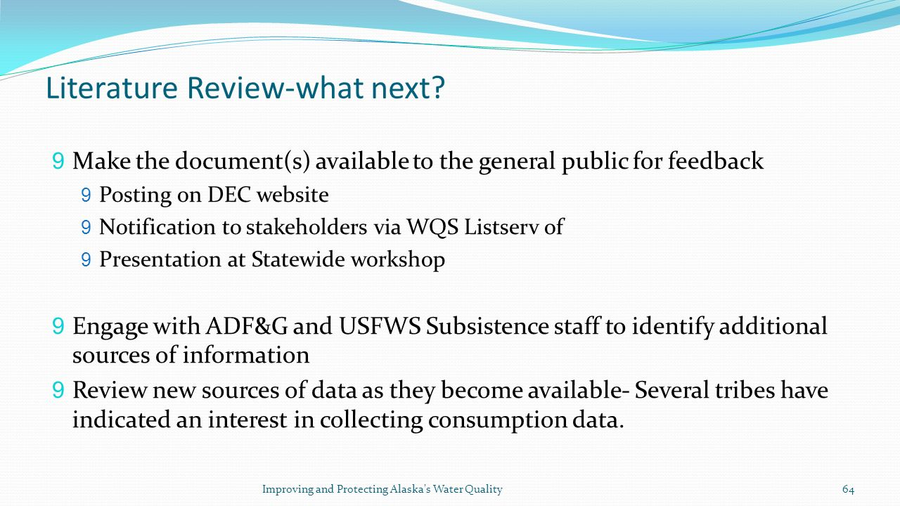 Literature Review-what next.