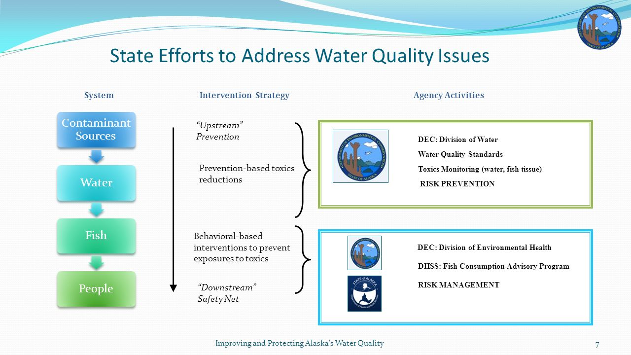 State Efforts to Address Water Quality Issues Prevention-based toxics reductions Behavioral-based interventions to prevent exposures to toxics DEC: Division of Water Water Quality Standards Toxics Monitoring (water, fish tissue) RISK PREVENTION DEC: Division of Environmental Health DHSS: Fish Consumption Advisory Program RISK MANAGEMENT SystemIntervention StrategyAgency Activities Upstream Prevention Downstream Safety Net Improving and Protecting Alaska s Water Quality7