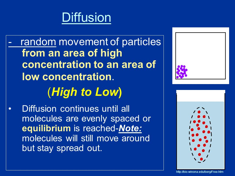Diffusion - random movement of particles from an area of high concentration to an area of low concentration.