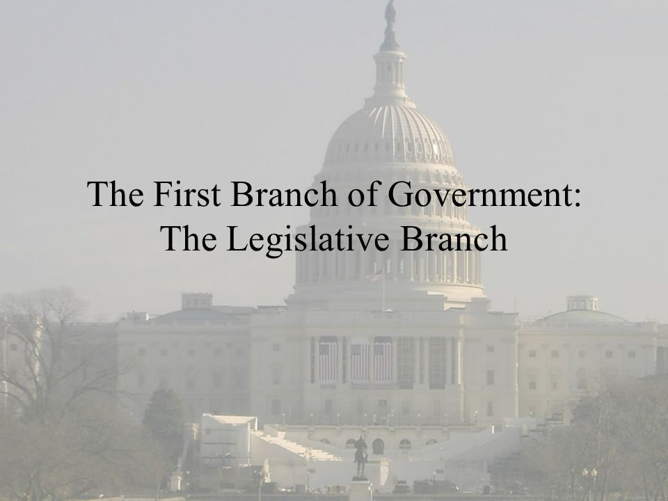 The First Branch of Government: The Legislative Branch