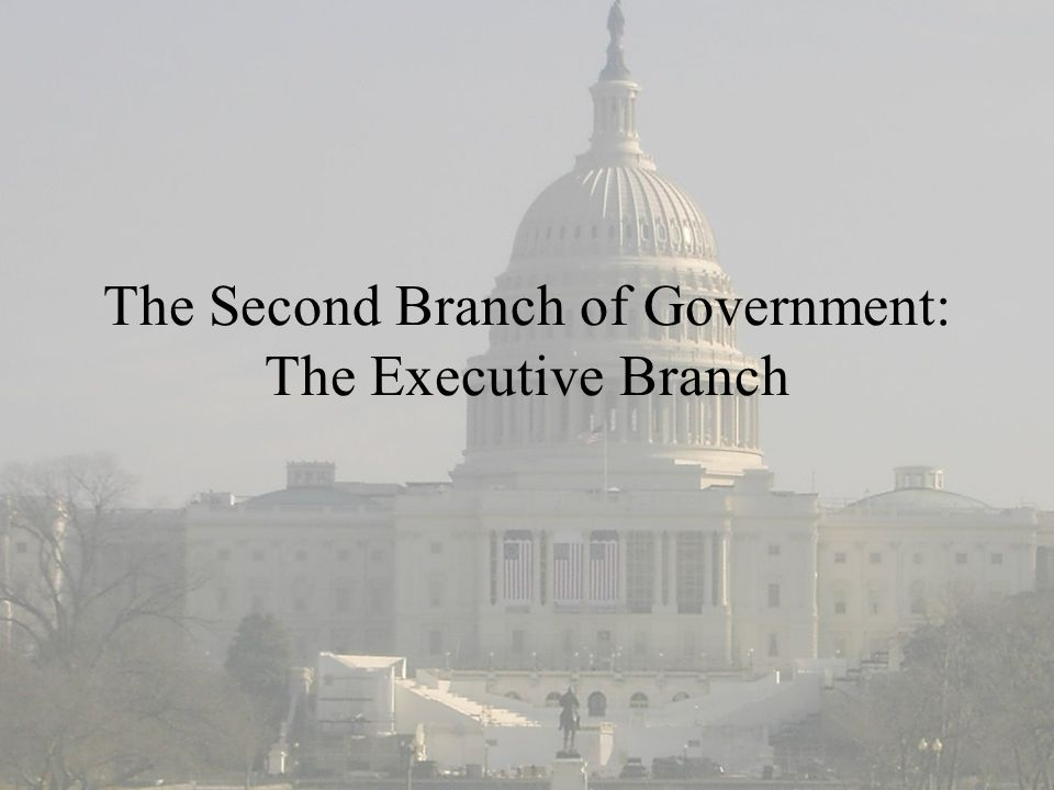 The Second Branch of Government: The Executive Branch
