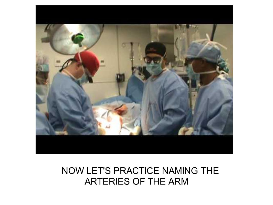 NOW LET'S PRACTICE NAMING THE ARTERIES OF THE ARM