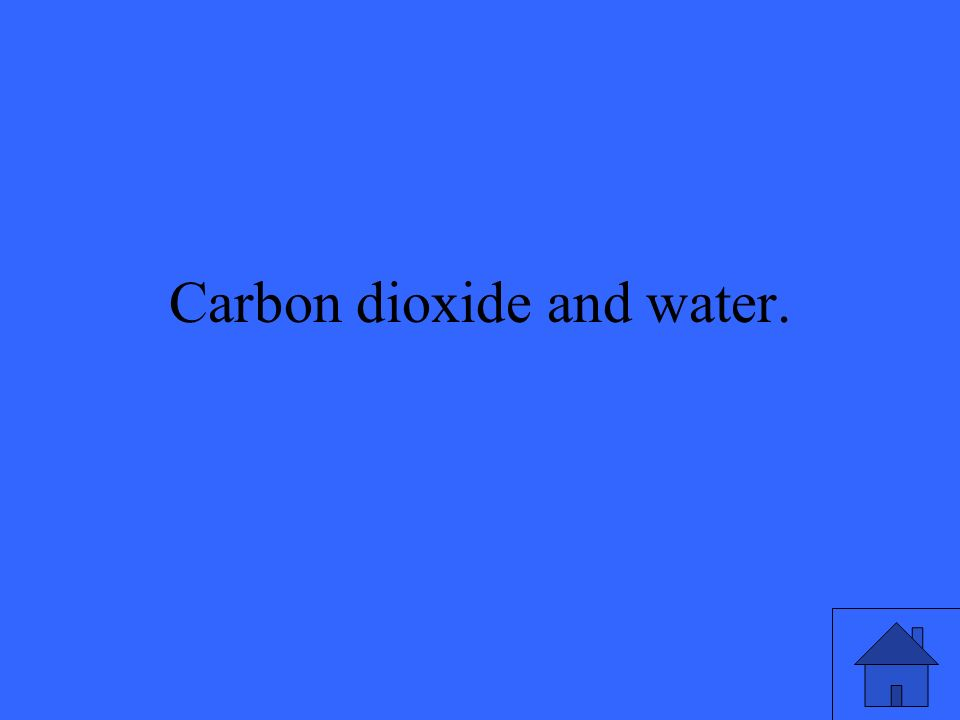 Carbon dioxide and water.