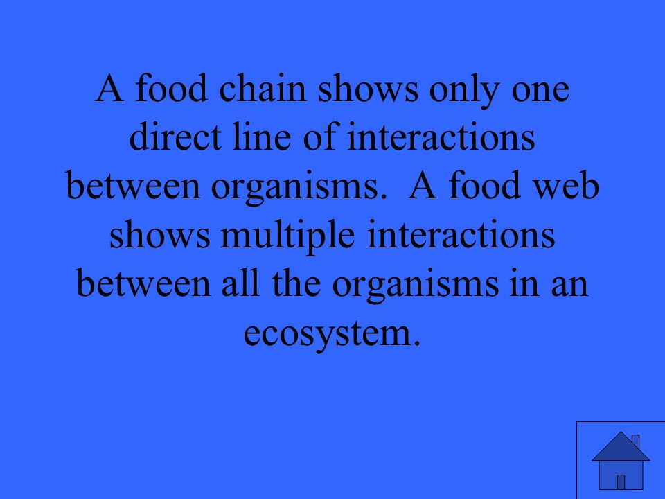A food chain shows only one direct line of interactions between organisms.