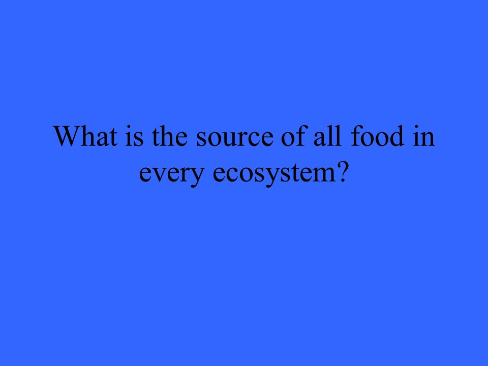 What is the source of all food in every ecosystem