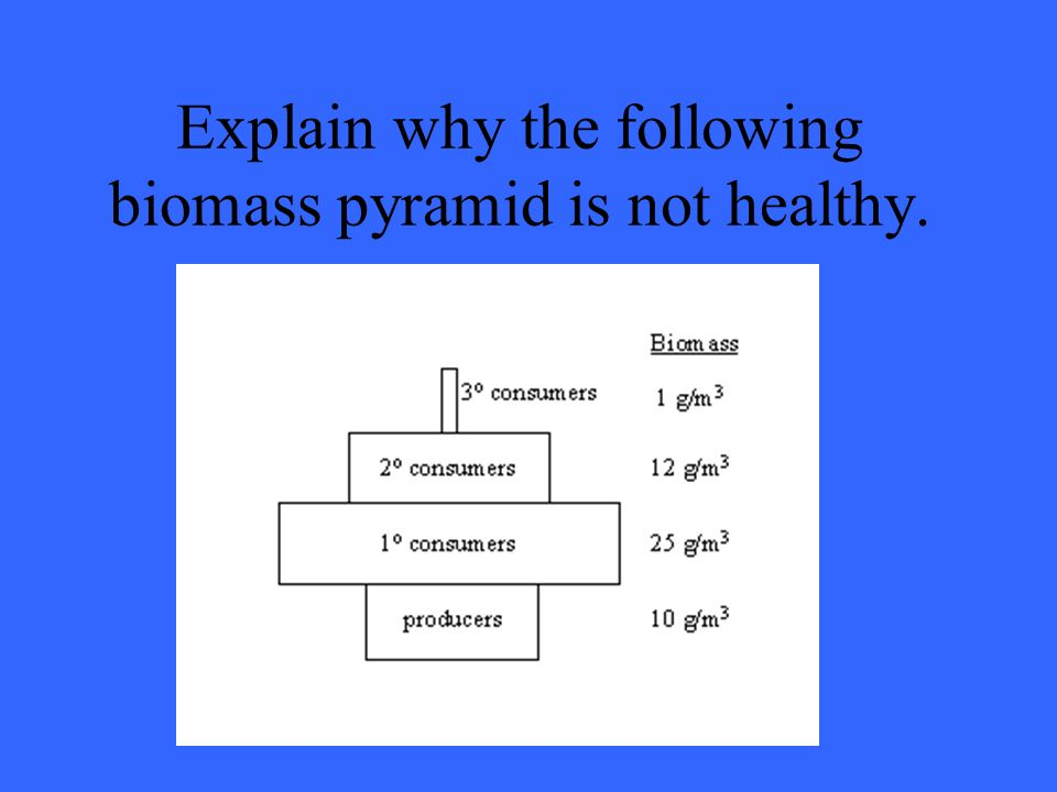 Explain why the following biomass pyramid is not healthy.