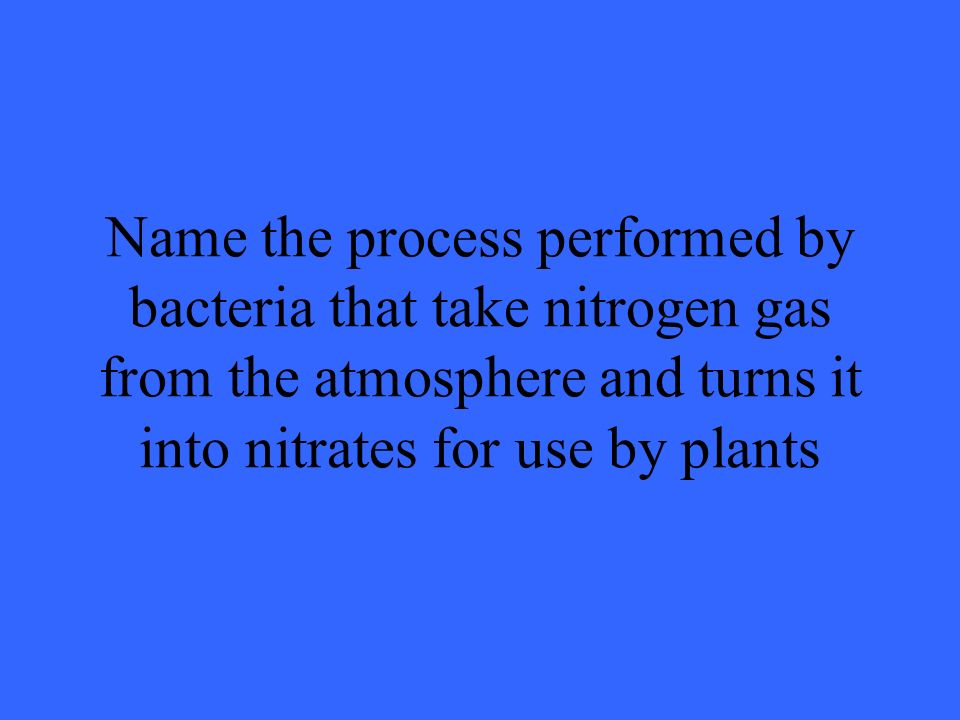 Name the process performed by bacteria that take nitrogen gas from the atmosphere and turns it into nitrates for use by plants