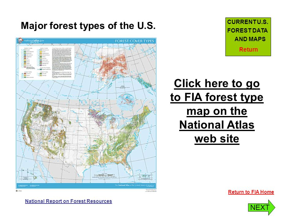 Return To Fia Home Major Forest Types Of The U S