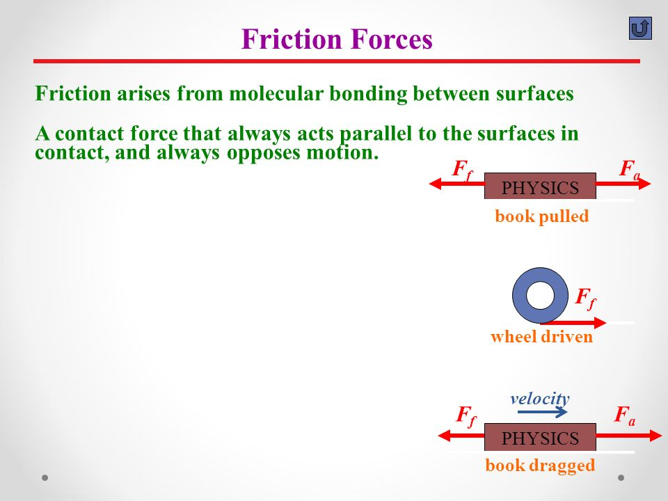 A contact force, often called a support force, that acts perpendicular to the surfaces in contact.