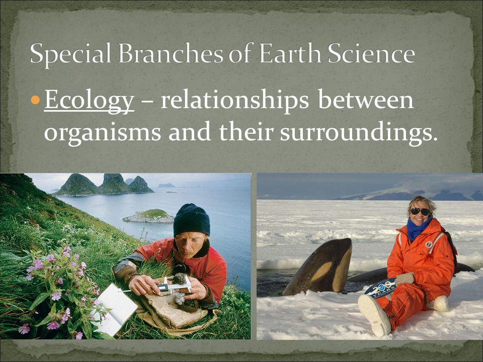 Ecology – relationships between organisms and their surroundings.