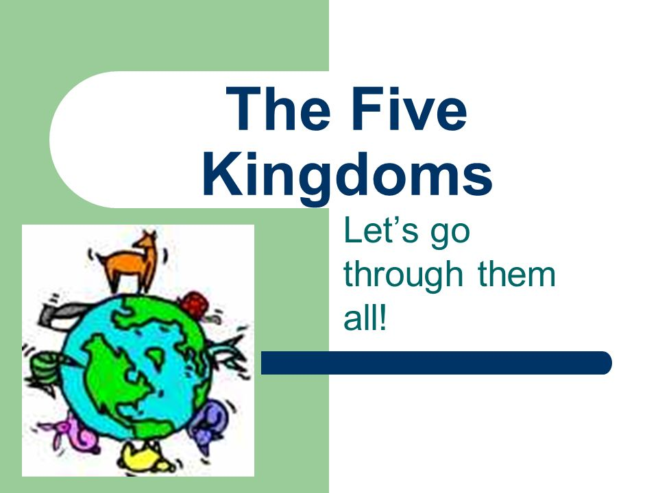 The Five Kingdoms Let's go through them all!