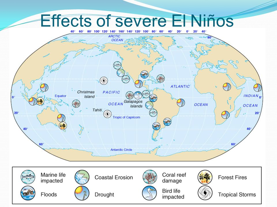 Ocean Currents A penguin walks into a bar and asks the pharmacist – El Nino Worksheet