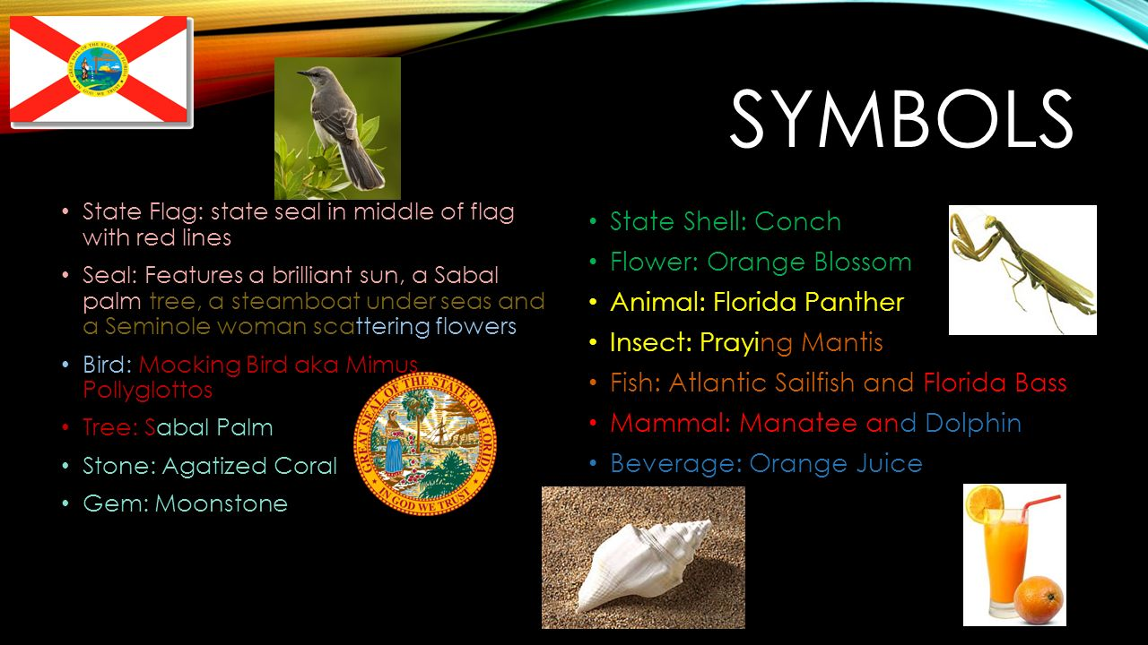 Floridaflorida state nickname the sunshine state state motto in 4 symbols state buycottarizona Gallery
