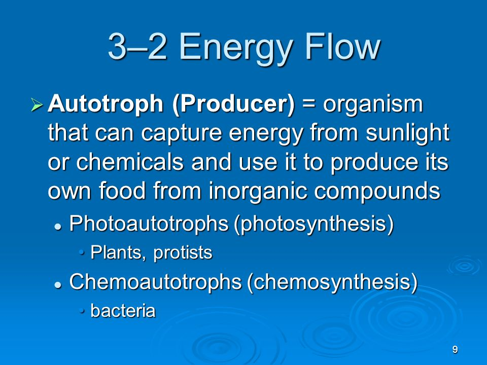 Chapter 4:autotrophy collecting energy for the non-living environment?