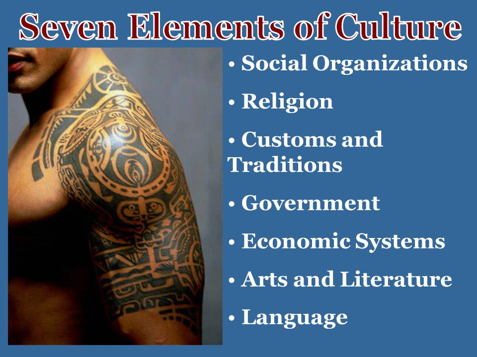 Social Organizations Religion Customs and Traditions Government Economic Systems Arts and Literature Language