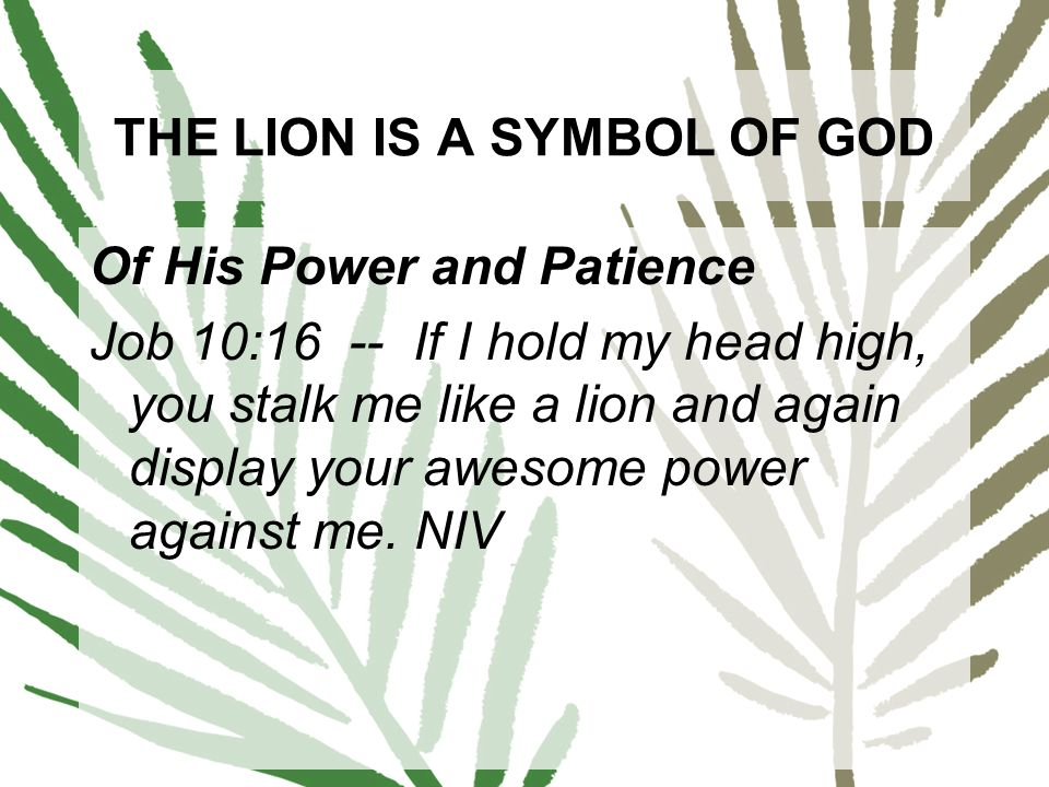 Enter The Lion On Palm Sunday The Nature Of Lions In The Bible