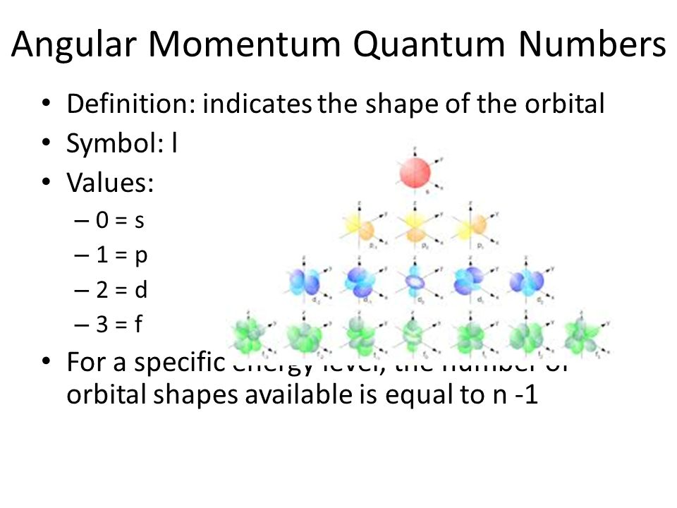 Angular Momentum Quantum Numbers Definition: indicates the shape of the orbital Symbol: l Values: – 0 = s – 1 = p – 2 = d – 3 = f For a specific energy level, the number of orbital shapes available is equal to n -1