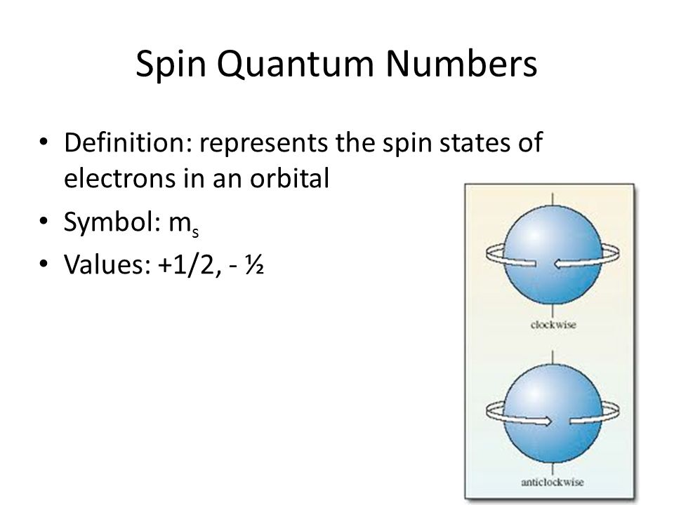 Spin Quantum Numbers Definition: represents the spin states of electrons in an orbital Symbol: m s Values: +1/2, - ½