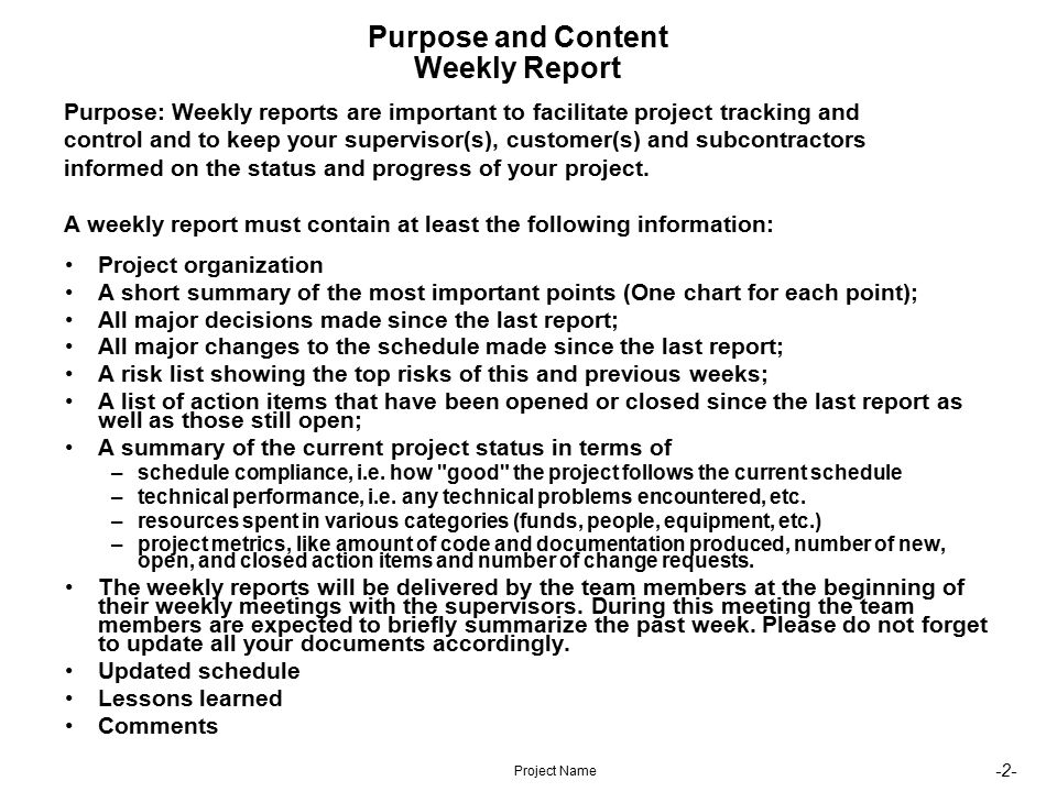 2  Project Name Purpose And Content Weekly Report Project Organization A  Short Summary Of